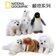 Animaux Baby POLAR National Geographic