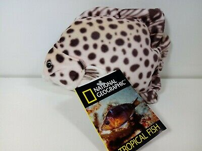 Peluche  Tropical fish National Geographic